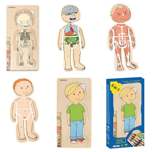 Vücudumuzu Tanıyalım Erkek Ahşap Puzzle